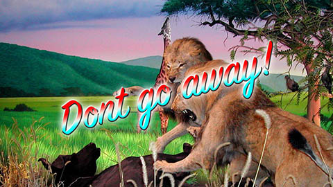 44-dont-go-away_1