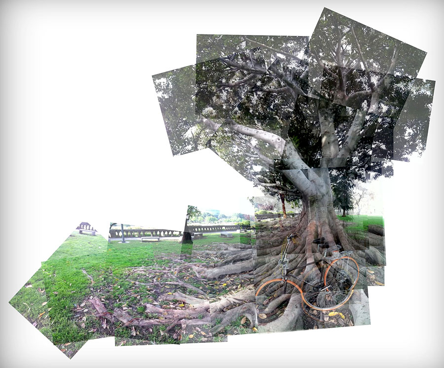collage picture in exposition park, los angeles