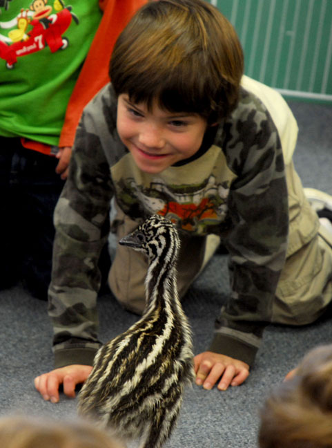 baby emu visits school